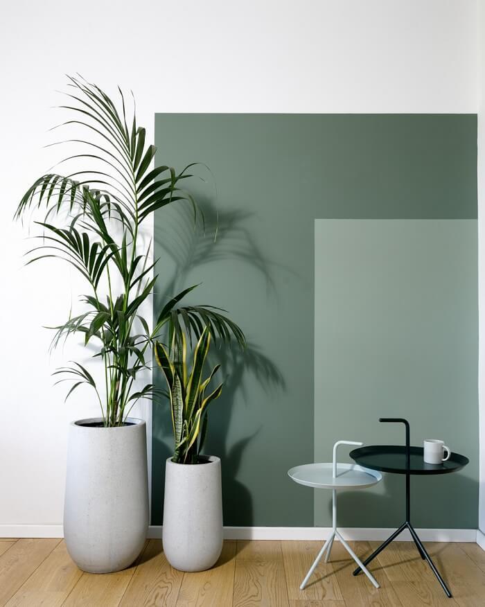 צבע ירוק לקיר